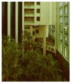 建筑 节能/图3 生态中庭
