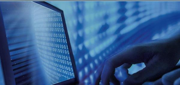 如何减少网络攻击的风险?