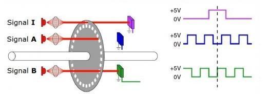 图2b 换向编码器产生的U、V和W波形   编码器技术   最著名的三种编码器方法分别基于光学技术、磁技术或电容技术。简单来说,光学技术采用带槽圆盘,一侧是LED,而光电晶体管在相对的一侧。当圆盘转动时,光程被阻断,得到的脉冲指示轴的转动和方向。虽然光学方法成本低且效率高,但是以下两个因素使得光学编码器的可靠性下降:污垢、灰尘和油脂等污染物会干扰光程,及LED的使用寿命有限,通常几年之内其亮度损失过半,最终被烧坏。   除了利用磁场而非光束之外,磁编码器的结构与光学编码器类似。磁编码器用磁盘代替带槽
