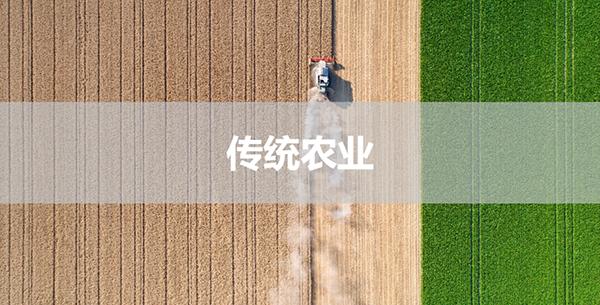 世界糧食日|數字化食品生產創造可持續未來